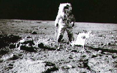 flights to the moon apollo - photo #10