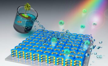 Hydrogen Fuel from Seawater and Sunlight