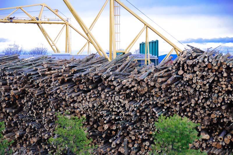 Wood-processing.jpg
